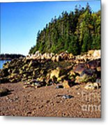 Rocky Shoreline Deer Isle Maine Metal Print