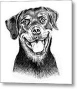 Rocky The Rottweiler Metal Print