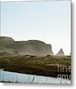 Rodeo Beach 2 Metal Print