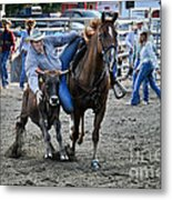 Rodeo Bulldog Metal Print