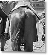 Rodeo Bums Metal Print