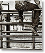 Rodeo Fence Sitters- Sepia Metal Print