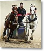Rodeo Leader Of The Pack Metal Print