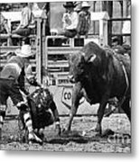 Rodeo Mexican Standoff Metal Print