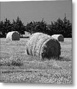 Rolling In The Hay Bw Metal Print