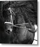 Romke 401 Long Line Metal Print