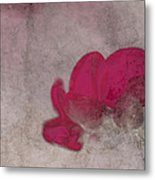 Rondo Floral - 22t02 Metal Print