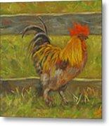 Rooster Strut Metal Print