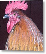 Rooster Watercolor Metal Print
