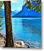 Rooted In Lake Minnewanka Metal Print