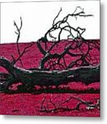 Rooted In Red Metal Print