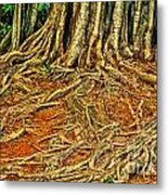 Roots 5 Metal Print