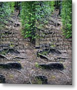 Roots - Cross Your Eyes And Focus On The Middle Image That Appears Metal Print