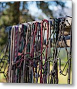 Rope Halters For Horses Lined Metal Print