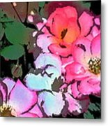 Rose 197 Metal Print by Pamela Cooper