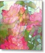 Rose 200 Metal Print