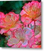 Rose 203 Metal Print by Pamela Cooper