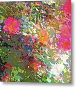 Rose 207 Metal Print by Pamela Cooper