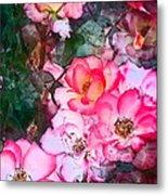 Rose 239 Metal Print
