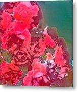 Rose 248 Metal Print