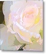 Rose 254 Metal Print