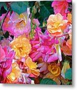 Rose 304 Metal Print