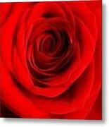 Rose 6 I Love You Metal Print