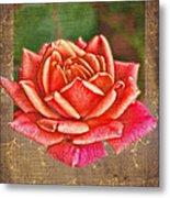 Rose Blank Greeting Card Metal Print