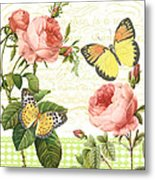 Rose Blush-a Metal Print