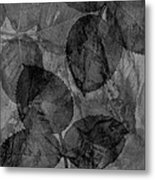 Rose Clippings Mural Wall - Black And White Metal Print