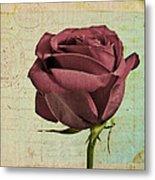 Rose En Variation - S23ct06 Metal Print
