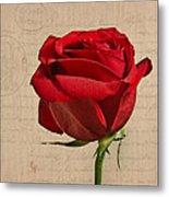 Rose En Variation - S2at03a Metal Print