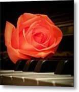 Rose From A Sweetheart Metal Print