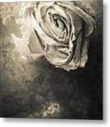 Rose From Another Day Metal Print