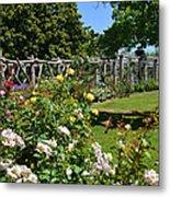 Rose Garden And Trellis Metal Print