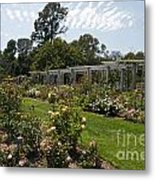 Rose Garden At The Huntington Library Metal Print