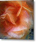 Rose Glows Metal Print