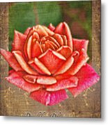 Rose Greeting Card Birthday Metal Print