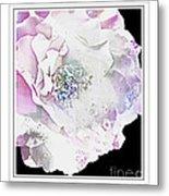 Rose In Pastels Metal Print