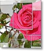 Rose Montage Metal Print