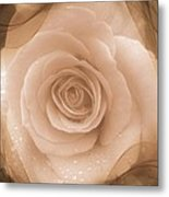 Rose Romance Metal Print