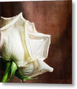 Rose - See Things Differently Metal Print