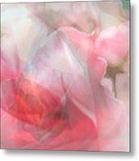 Rose Shadows Metal Print by Judy Paleologos