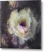 Rose Spray Metal Print by Jill Balsam