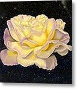 Rose Stars Metal Print