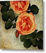 Rose Tinted Memories Metal Print