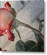 Rose To The Side 4 Metal Print