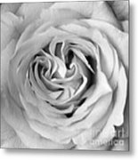 Rose With Heart B W Metal Print