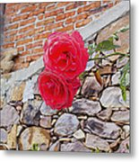 Roses Against The Wall Metal Print