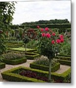 Roses And Cabbage -  Chateau Villandry Metal Print